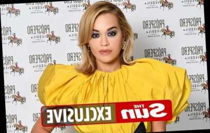 Rita Ora could be stranded in Bulgaria for Christmas after flights to UK suspended due to mutant Covid