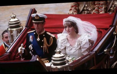 Body Language Expert Makes Bold Claims About Princess Diana And Prince Charles' Relationship