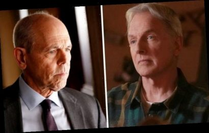 NCIS plot hole: Gibbs and Fornell's gun tampering blunder exposed in key scene