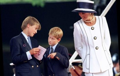 Princess Diana Once Revealed She 'Can't Remember' Parts of Her Royal Life: 'I've Blotted It Out, It Was Such Pain'