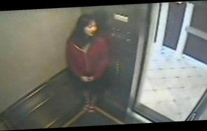 Vanishing at the Cecil Hotel: Key Details From the Troubling Elisa Lam Elevator Video