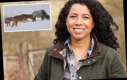 Countryfile fans rage that BBC is 'ripping them off with licence fee' as show resorts to airing old footage