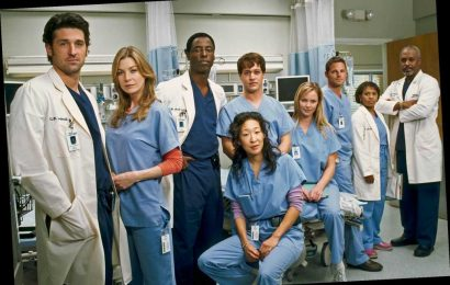 Grey's Anatomy Book How to Save a Life to Reveal New Details About the ABC Drama