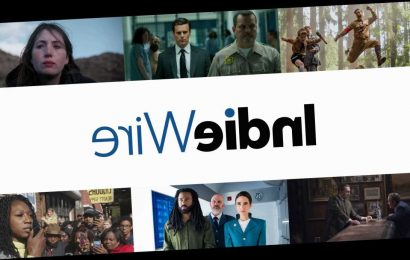 IndieWire Film and TV Critics, Website Nominated by National Arts & Entertainment Journalism Awards