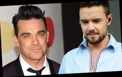 One Direction Liam Payne: 'Robbie Williams gave me advice on going solo'
