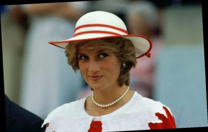 Prince William and Kate Middleton's Recent Princess Diana Tribute Is Making Fans Skeptical
