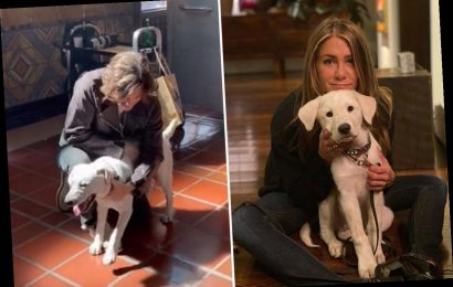 Jennifer Aniston fans suspect she's secretly BACK with ex John Mayer after singer appears to post photo of actress' dog