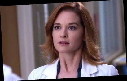 Sarah Drew's 'Grey's Anatomy' Season 17 Return As April Kepner Is Such A Treat