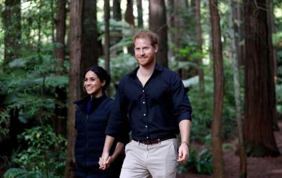 Harry and Meghan could soon be fully 'ditched' from royal family