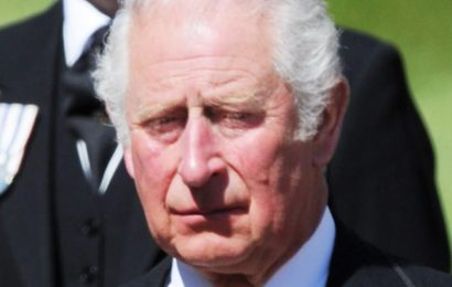 The Real Reason This Expert Thinks Prince Charles May Not Become King
