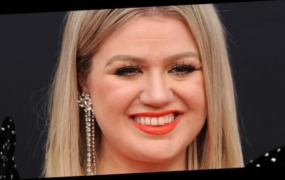 Kelly Clarkson's TMI Story Has People Cringing