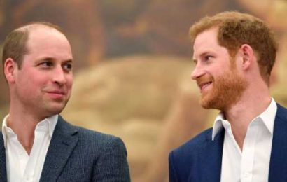 Prince William & Prince Harry's Life in Photos, From Prep School Playmates to Feuding Royals