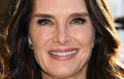 What Brooke Shields Learned From Suffering A Terrible Leg Injury
