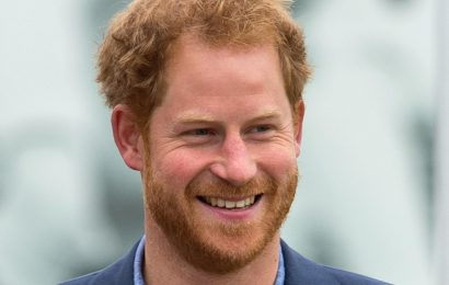 Here Are The Titles Prince Harry's Children Will Inherit Once Prince Charles Becomes King