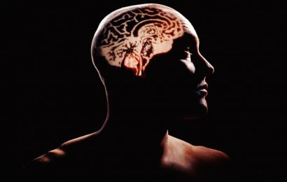 Human brains are capable of 'mental time travel,' study says