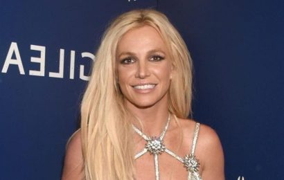 What's next for Britney Spears' conservatorship? Legal experts weigh in