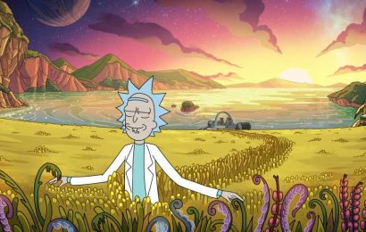 'Rick and Morty' Season 5 Teases a New Diane and Rick Sanchez Storyline