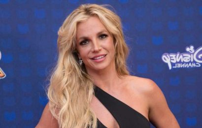 Britney Spears Wants to Appoint Her Own Attorney