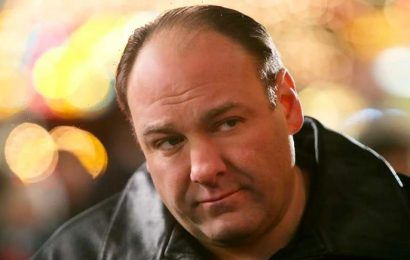 HBO Apparently Paid James Gandolfini a Ton of Money to Not Join 'The Office' After Steve Carell Left