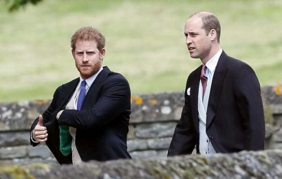 """Prince Harry Had a """"Private Conversation"""" with the Royals About His Memoir"""
