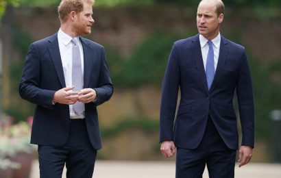 Prince Harry & William wont spend family time together over the holidays