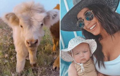 Teen Mom Chelsea Houska gives fans an inside look at her gorgeous South Dakota farm with goats, a pig & more