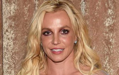 Why Britney Spears Reportedly Called 911 the Night Before Her Testimony
