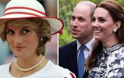 Williamand Katepraised forcommitment to Dianas legacy Its what shed expect