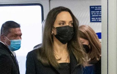 Angelina Jolie Carried a $5,000 Bag With the 17-Cent Face Mask Trend She's Been Wearing on Repeat