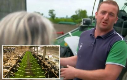 Countryfile fans all have the same complaint about 'cruel' dairy farm – and are stunned to recognise the man in charge