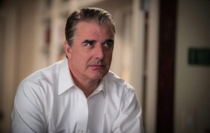'The Good Wife': Chris Noth Joined the Show Because He Thought It Might Be 'Fun'
